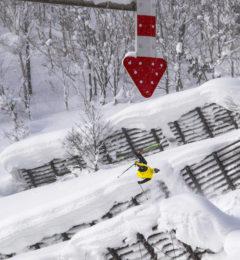 Freestyle - Freeride Skiing Japan Powder - Freedom Snowsports